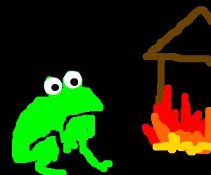 Tree frog immediately regrets arson.