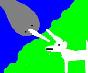 Narwhal vs. Unicorn