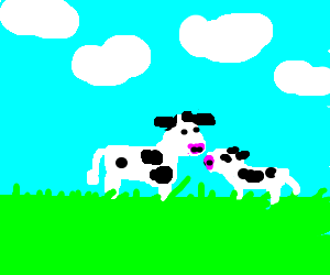 Mother cow with her baby