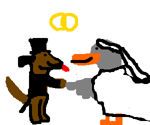 Wedding of a dogman and duckwoman