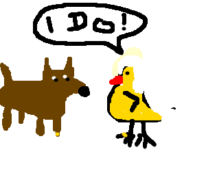 Dog and bird get married