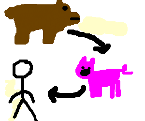 Bear to pig and pig to human evolution