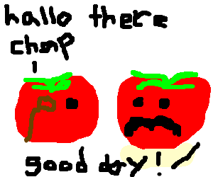 Two tomatoes have a chat