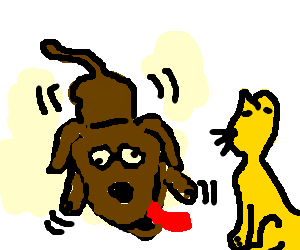 Retarted dog has seisure in front of golden cat