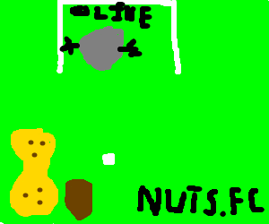 peanuts play soccer with a gray olive