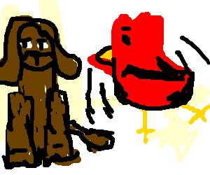 Brown Dog is not impressed w/ Red Bird's dancing