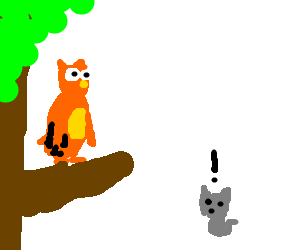 orange owl and grey cat surprized