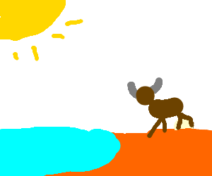 Water Buffalo Goes To The Beach