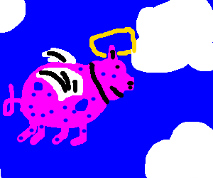 holy pig flying trough the clouds