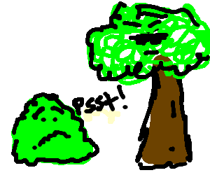 Scared bush warns suspicious tree