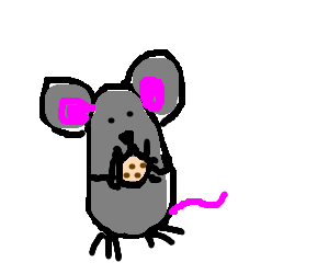 a mouse eating a cookie