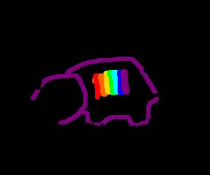 Gay platypus