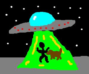 UFO abducting man and dog
