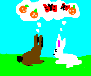 Rabbits thinking about oranges and butterflies