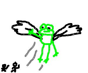 Toad flies home