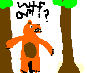 Bear with a huge penis is lost in the woods