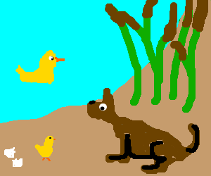dog sees hatched bird by pond w/ reeds