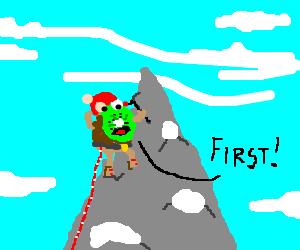Kiwi climbs Mt Everest