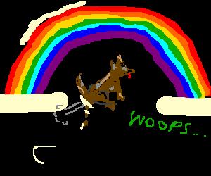 Dog sharting under a rainbow