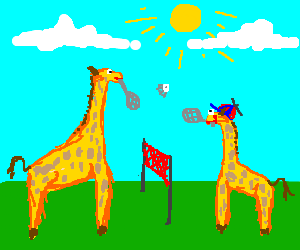 giraffes playing badminton