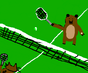 Brown cat plays brown bear at tennis