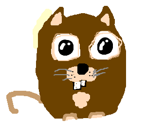 Adorable, apologetic rodent