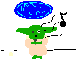Yoda tries out for American Idol