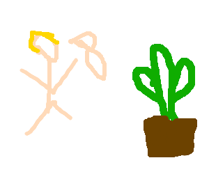 Man attacks cactus with baby