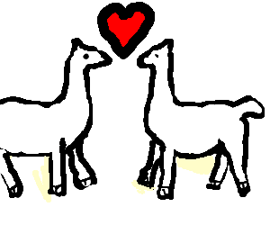 llama love <3