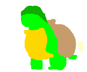 turtle with a umbrella hat