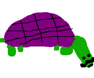 turltle, big moustache, purple shell.pasty