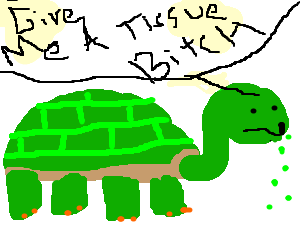 mean slow turtle with running nose