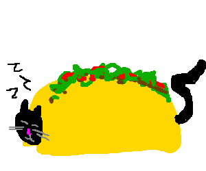 Cat sleeping in a taco