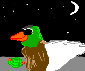 A duck and a hose at this hour?