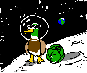 A male duck with sunglasses with cabbage on moon