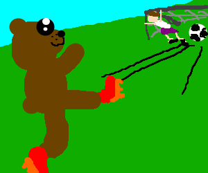Bear with red cleats kicks soccer goal