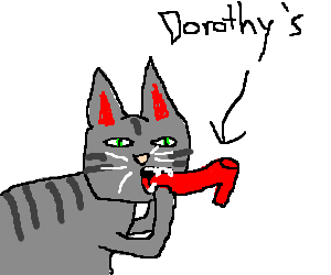 Grey cat bites red shoe. Dorothy will get mad