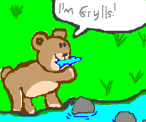 A Bear called Grylls eats fish.
