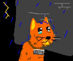 Abandoned alleycat Pete cries during a storm