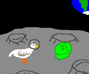 Astronaut duck and a head of lettuce on the moon