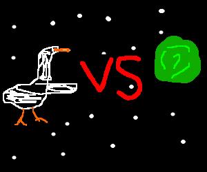 Goose vs Cabbage... IN SPAAAAAAAAAAAAAAAAAAAACE