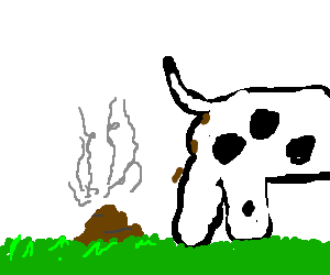 steaming cow dung