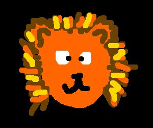 A confused bozz eyed shaking lion