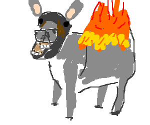 A Flaming Donkey