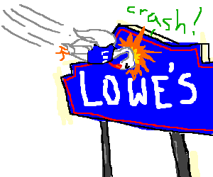 disgruntled Lows employe bird crashes into sign