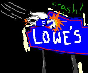 disgruntled Lows employe bird crashes into sign