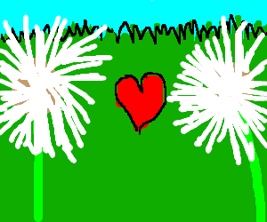 Two dandilion clocks fall in love.