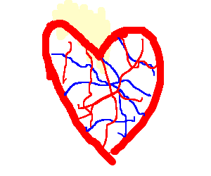 Veiny heart