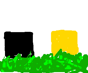 black square and yellow square lying on th grass