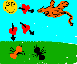 Sun falls in love w/ dragon,1red ant 1black ant